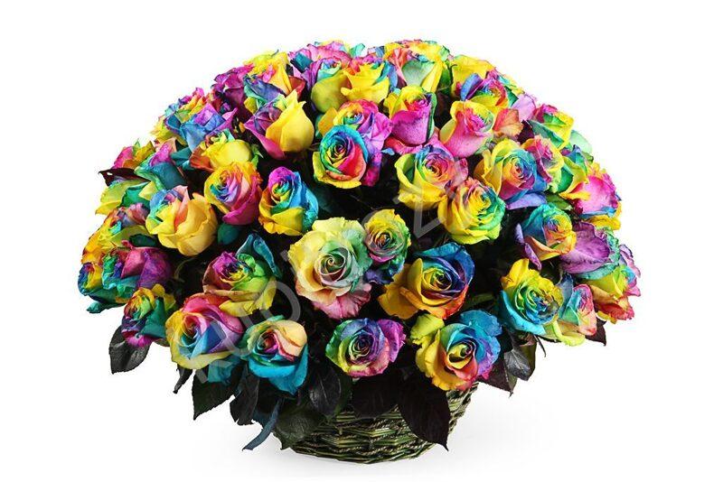 Букеты разноцветных роз в картинках и борьба с ними